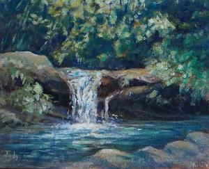 judy pool at asa wright nature centre
